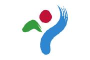 Seoul flagga.png