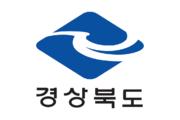 Gyeongsangbuk flagga.png