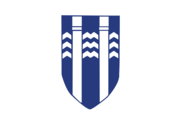 Reykjavík flagga.png